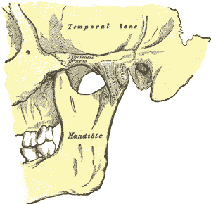 TMJ disorder jaw joint